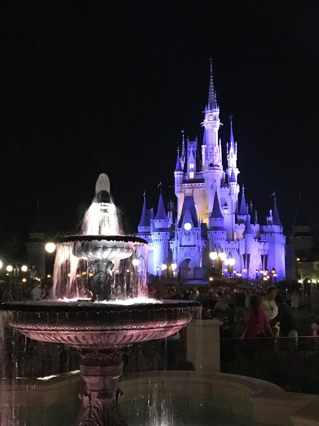 fountain & Castle