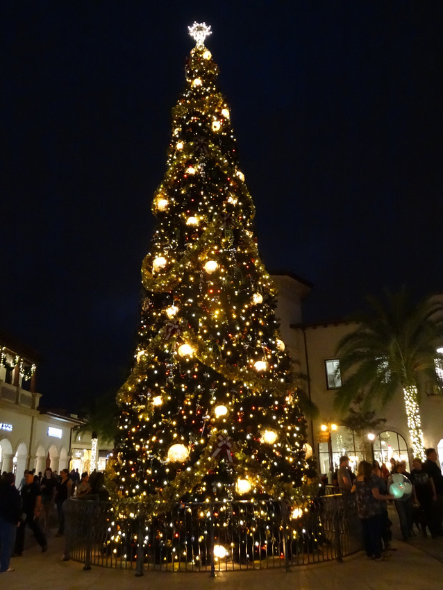 Town Center Christmas tree
